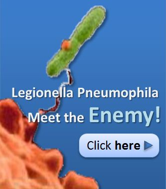 bacteria meet the enemy new